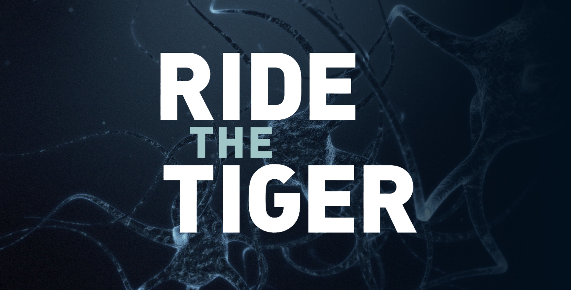 Ride the Tiger – a Guide Through the Bipolar Brain