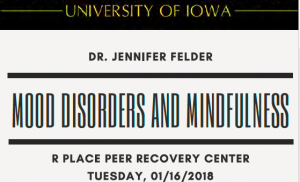 NNDC Visiting Professor Program at the University Iowa, Mood Disorders Center